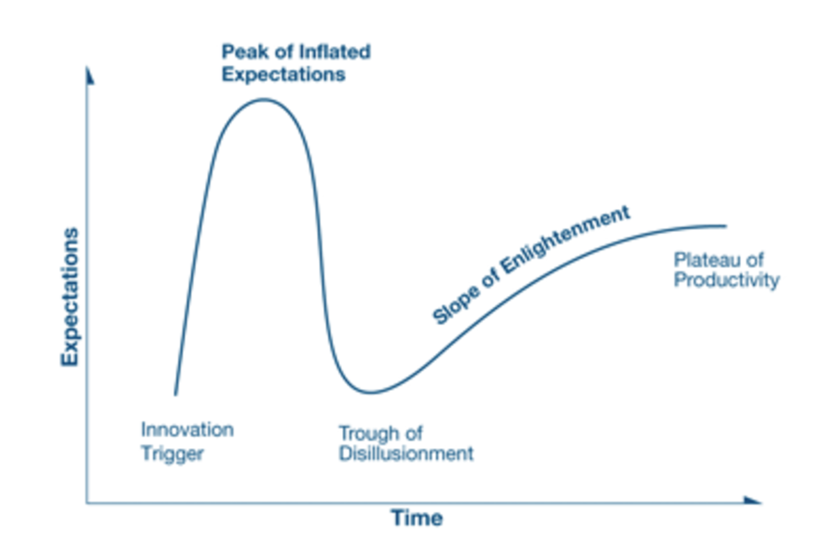 Gartner Hype Cycle in relation to the on-demand ecomony