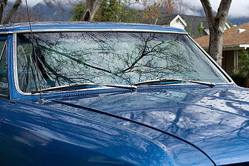 Taking care of car windshields with a new service: Spiffy Rain Repellent