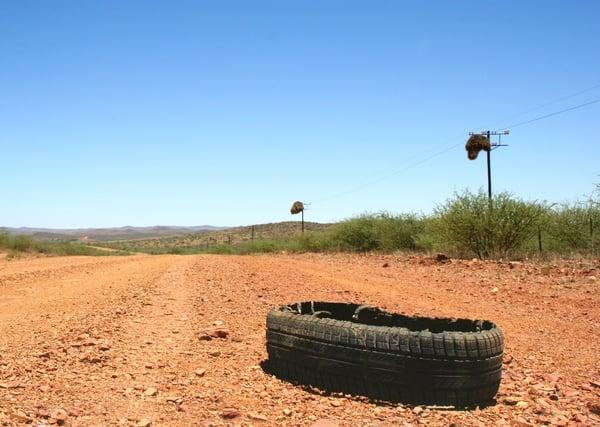 landscape-grass-bird-road-car-field-536122-pxhere.com