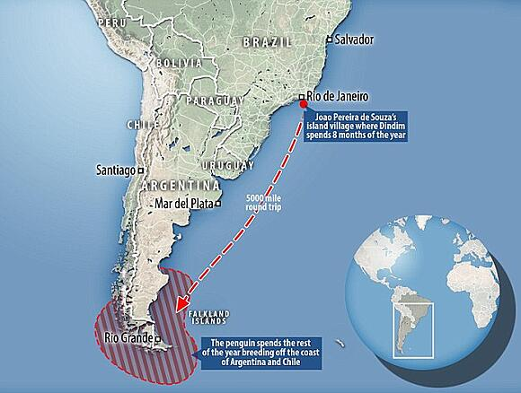 migration map for spiffy the penguin