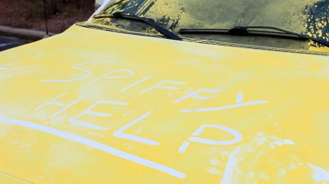 Car covered in pollen needs help