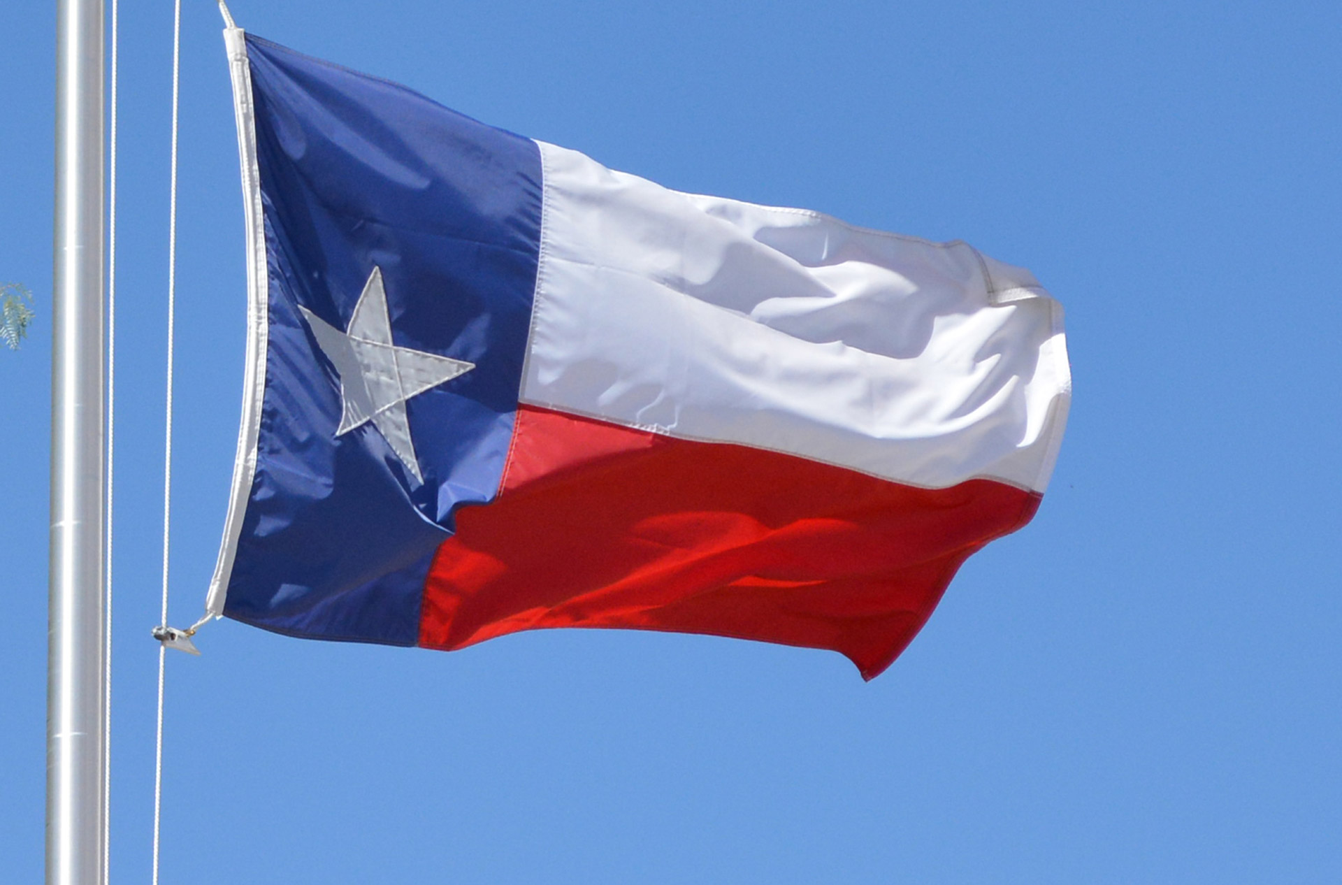 Texas flag in the wind